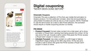 Pinterest Advertising Digital-Couponing